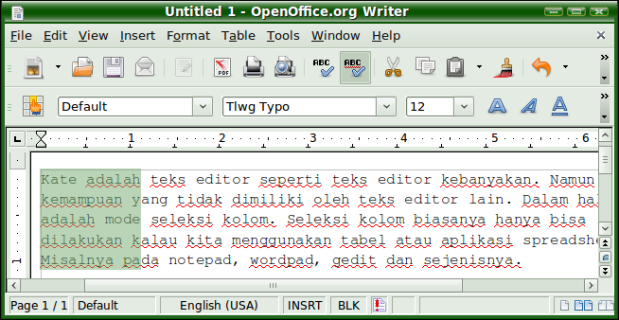 Screenshot-Untitled 1 - OpenOffice.org Writer-1