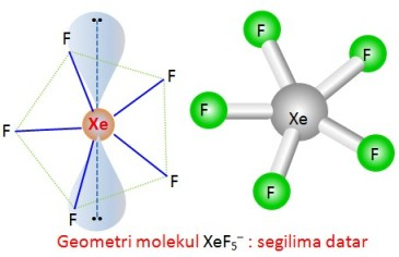Struktur XeF5- by Urip Kalteng