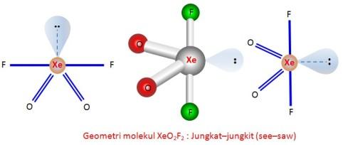 Struktur XeO2F2 by Urip Kalteng
